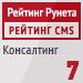 """Рейтинг CMS / Консалтинг (""""Рейтинг Рунета"""") — 7 место"""
